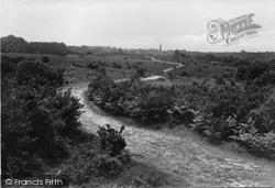 Ranmore Common, Pathway 1915