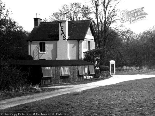 Ranmore Common, the Post Office c1955