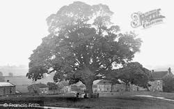 The Village 1913, Ravensworth