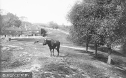 Redhill, Common 1915