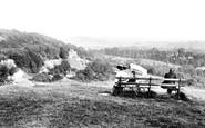 Reigate, view from near Suspension Bridge 1906