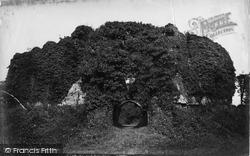 Castle c.1876, Restormel