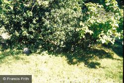 Nanteos House, Dog's Cemetery 1985, Rhydyfelin
