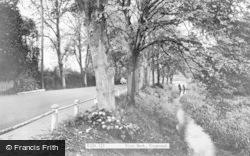 Ringwood, River Bank c.1960