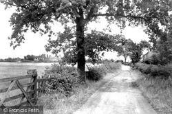 Sandham Lane c.1955, Ripley