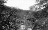 Rochdale, Ashworth Valley 1895