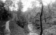 Rochdale, Carr Woods 1895