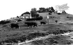 Rodborough, Common c.1960