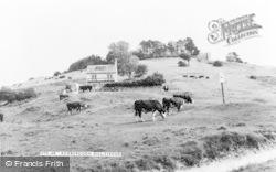 Rodborough, Hill c.1960