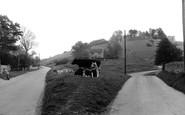 Rodborough, the Fort c1955