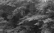 Rokeby, Bertram's Cave 1890