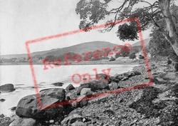 Woodside 1895, Rostrevor