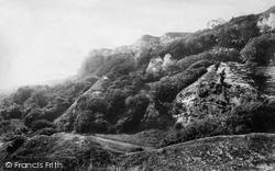 The Landslip 1900, Rousdon