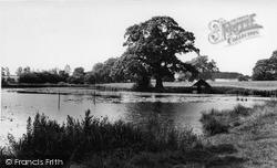 Skreens Park Lake c.1965, Roxwell