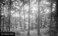 Royston, The Green Walk 1929