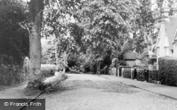 Rusthall, Path To Rusthall Park c.1955