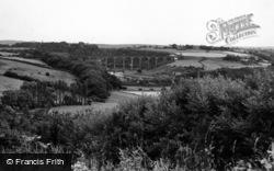 The Viaduct c.1955, Ruswarp