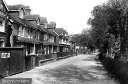 The Grove 1906, Rye