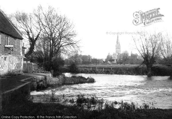 Salisbury,Cathedral, from Old Mill c1955,Wiltshire