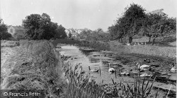 Sampford Peverell, The Canal And Church c.1955