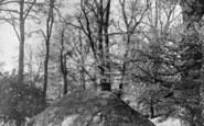 Sanderstead, Paddy's Bottom c.1887
