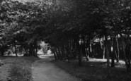 Sanderstead, The Footpath, Sanderstead Hill c.1955
