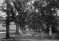 Sandhurst, Oak Grove 1901