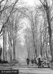 Savernake, Forest Avenue c.1955