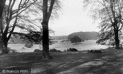 Savernake, From Leigh Hill c.1955