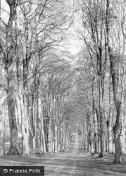 Savernake, Grand Avenue c.1950