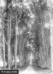 Savernake, Grand Forest Avenue 1902