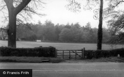 Scaynes Hill, The Cricket Field c.1960