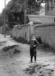 Young Boy 1899, Scone