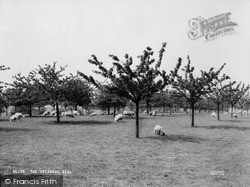The Orchards c.1965, Seal