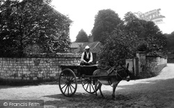 Seale, Donkey Cart 1906