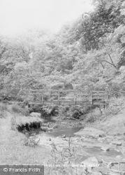 Seaton Delaval, The Old Footbridge, Holywell Dene c.1955