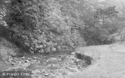 Seaton Delaval, The Stream, Holywell Dene c.1955