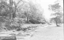 Seaton Sluice, Holywell Dene c.1965