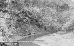 Seaton Sluice, The Stream, Holywell Dene c.1965