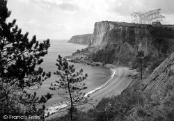 White Cliff From Jubilee Gardens c.1955, Seaton