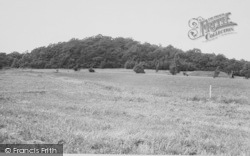 Selsdon, Golf Course And Crohamhurst Woods c.1955