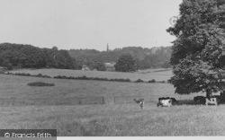 Selsdon, View From Littleheath Woods c.1955
