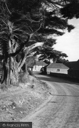 Selsey, Mill Lane c.1960
