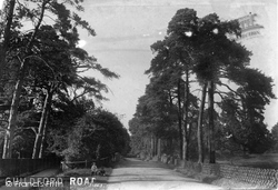 Shalford, Guildford Road 1904