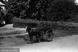 Shalford, Horse And Cart 1904