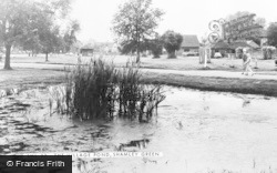 Shamley Green, The Village Pond c.1965