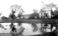 Shamley Green, Village Pond 1906