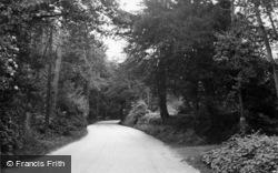 Sharpthorne, Black Dog Wood c.1955