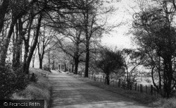 The Drive, Shelf Hall Park c.1960, Shelf
