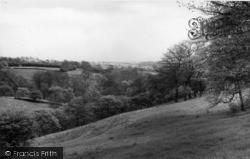 View From Afar c.1960, Shelf